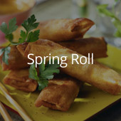 ANKO Food Making Equipment - Spring Roll
